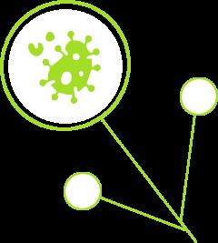 Autoimmune Diseases | funksjonellmedisinsk klinikk